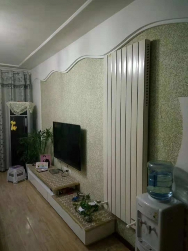 Wall Mounted Infrared Heating Electric Convector Heaters